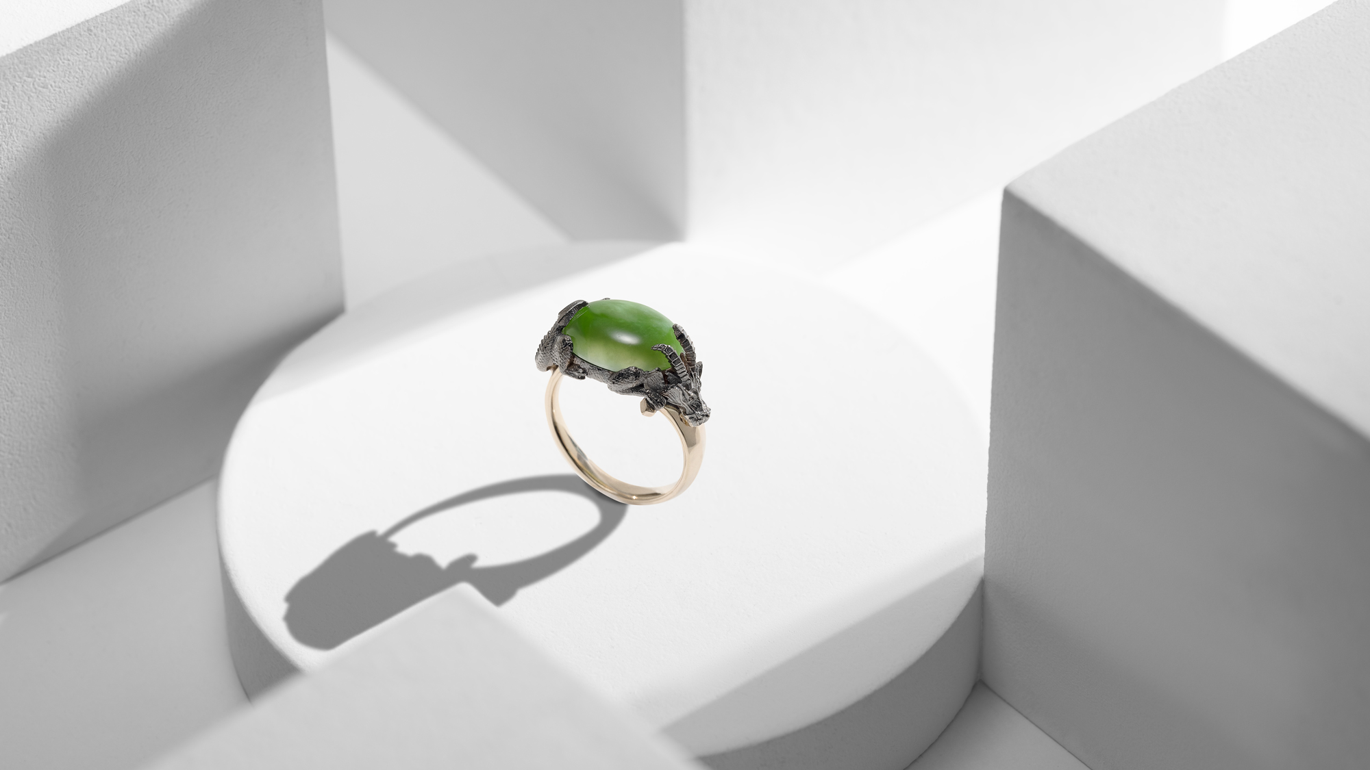 Wenbo Zhao-Creative Photography-Jewllery Photography with Object Maker-Dragon Ring